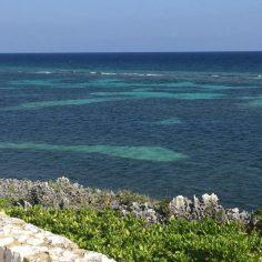 Cayman Island-web (27)