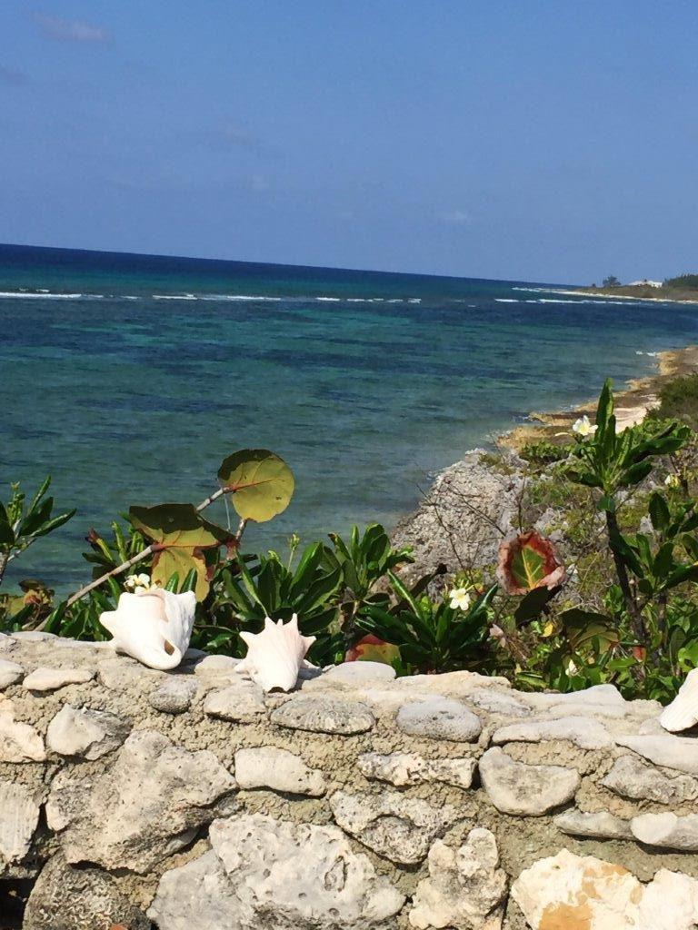 Cayman Island-web (31)