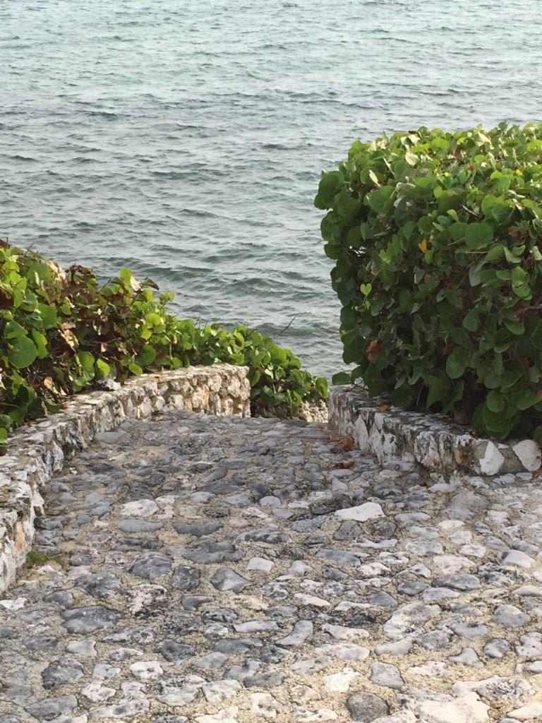 Cayman Island-web (7)