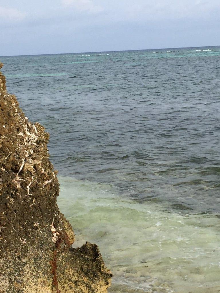 Cayman Island-web (8)